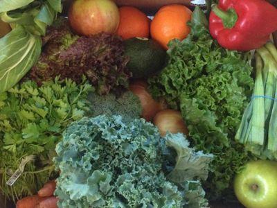 Berkshire Organics basket